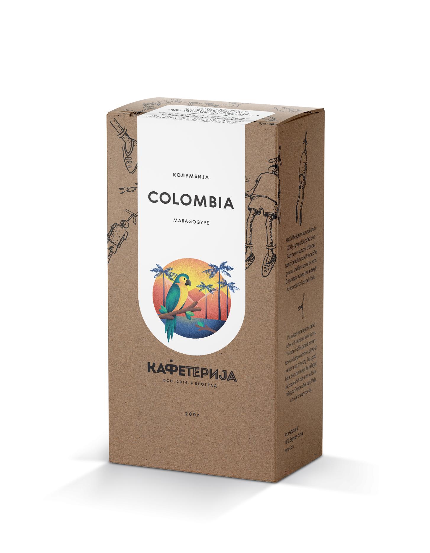 Colombia Maragogype